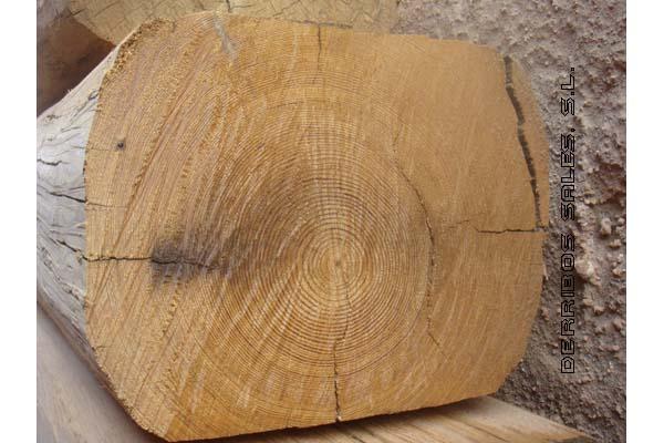 material-derribo-vigas-madera-corte
